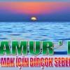 Bu Yaz Anamur'da Tatil Yapmak İçin Sebebiniz Var