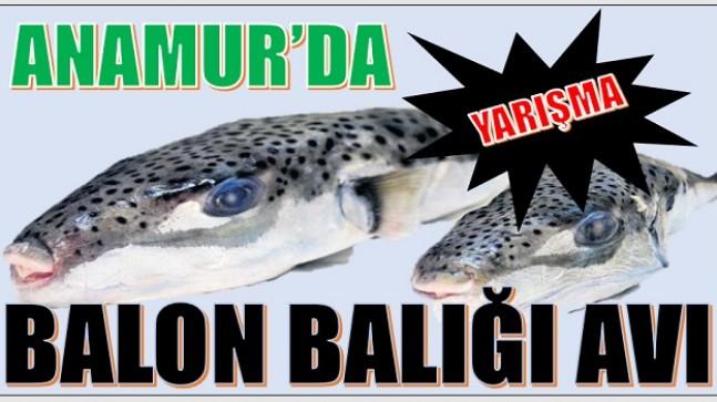 """BALIKÇILAR BALON BALIĞI  İÇİN """"RASTGELE """" DİYECEKLER"""