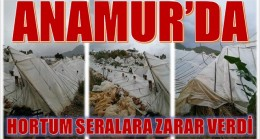 ANAMUR'DA HORTUM, SERALARA ZARAR VERDİ