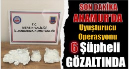 Uyuşturucu Madde Kullanan Şahıslar, Jandarma Ekipleri Tarafından Yakalandı