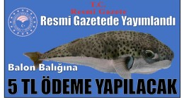 Resmi Gazetede Yayımlandı ; Balon Balığı Avcılarına 5 TL Destek Ödemesi Yapılacak