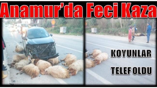 Anamur-Ermenek Yolunda Feci Kaza; Koyunlar Telef Oldu