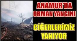 ANAMUR'DA CİĞERLERİMİZ YANIYOR