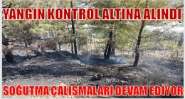 ANAMUR'DA ORMAN YANGINI KONTROL ALTINA ALINDI