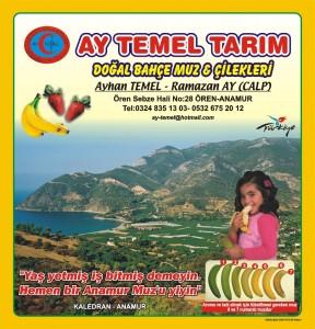 AYTEMEL